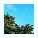 Le soleil a rendez vous avec le lune. #beaudimanchealaplage #bleu